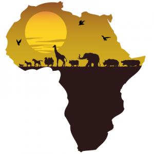 AFRICA 300x300 Africa's Century