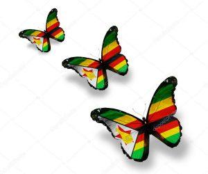 Zimbabwe 300x250 Africa's Century
