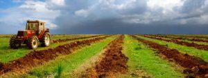 TAK 300x113 Nigeria: potentials in fertilizer market