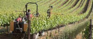 due 300x126 Premature deindustrialisation in Africa