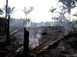incendi 300x225 Deforestation in Africa